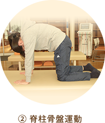 ② 脊柱骨盤運動